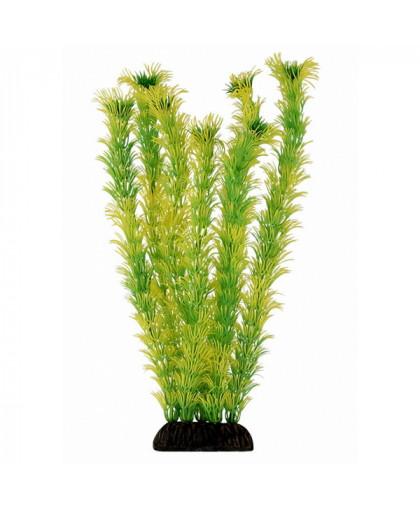Раст.плас.Амбулия желто-зеленая 30см.(2956)
