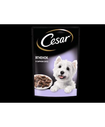 Cesar Влажный корм для собак в ягненок сырном соусе, пауч 85гр*