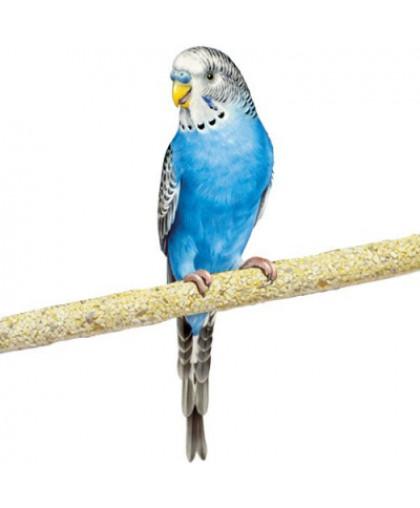 Жердочка для птиц PENN-PLAX цемент